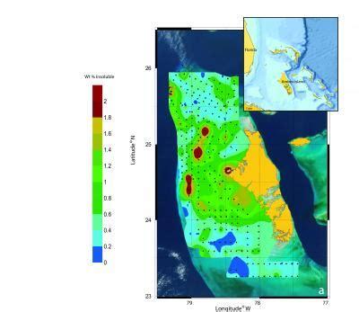 Marine scientists monitor longest mammal migration